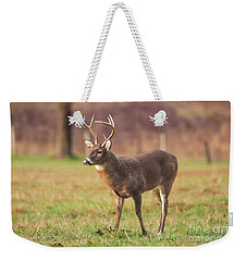 Weekender Tote Bag featuring the photograph Cades Cove Buck by Geraldine DeBoer