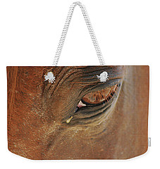Cades Cove Horse 20150907_39 Weekender Tote Bag by Tina Hopkins
