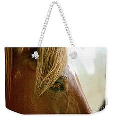 Cades Cove Horse 20160525_241 Weekender Tote Bag