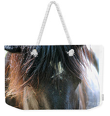 Cades Cove Horse 20160525_244 Weekender Tote Bag by Tina Hopkins