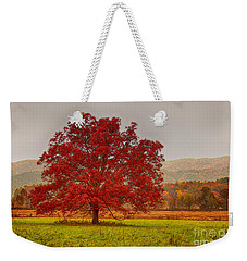 Weekender Tote Bag featuring the photograph Cades Tree After The Rain by Geraldine DeBoer