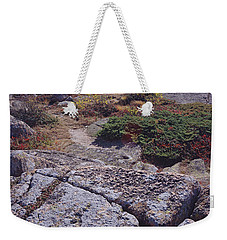 Cadillac Mountain Weekender Tote Bag