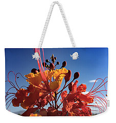 Weekender Tote Bag featuring the photograph Caesalpinia Bird Of Paradise by Chris Tarpening