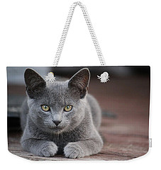 Weekender Tote Bag featuring the photograph Caesar by Rowana Ray