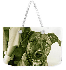 Weekender Tote Bag featuring the photograph Caeser 6 by Robin Coaker