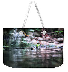 Weekender Tote Bag featuring the photograph Caiman by Traven Milovich
