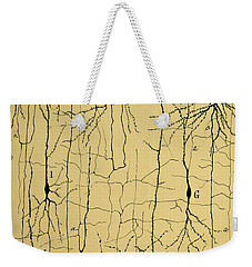 Cajal Drawing Of Microscopic Structure Of The Brain 1904 Weekender Tote Bag