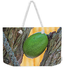 Weekender Tote Bag featuring the photograph Calabash Fruit by Bill Barber