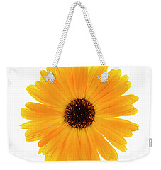 Weekender Tote Bag featuring the photograph Calendula Flower by Elena Elisseeva