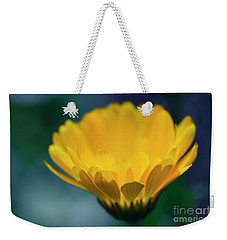 Weekender Tote Bag featuring the photograph Calendula by Sharon Mau