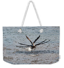 California Brown Pelicans Flying In Tandem Weekender Tote Bag