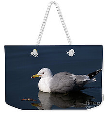 Weekender Tote Bag featuring the photograph California Gull by Sharon Talson