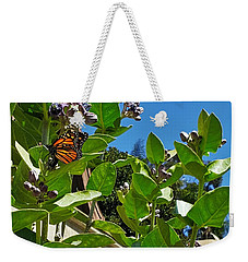 California Monarch Butterfly In San Diego  Weekender Tote Bag