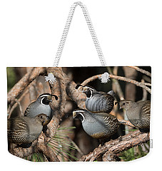 California Quail Covey  Weekender Tote Bag