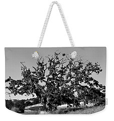 California Roadside Tree - Black And White Weekender Tote Bag