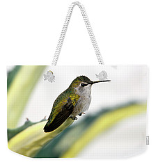 Calliope Hummingbird On Agave Weekender Tote Bag