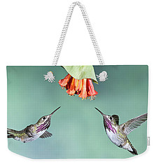 Calliope Hummingbirds Weekender Tote Bag
