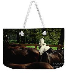 Calm Horses Weekender Tote Bag