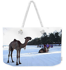 Camel On Beach Kenya Wedding 5 Weekender Tote Bag