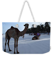 Camel On Beach Kenya Wedding 6 Weekender Tote Bag