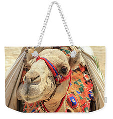 Weekender Tote Bag featuring the photograph Camel by Silvia Bruno
