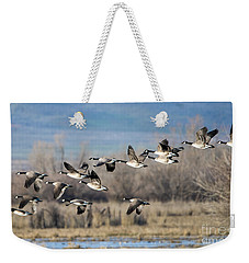 Canada  Geese Flock Weekender Tote Bag by Mike Dawson