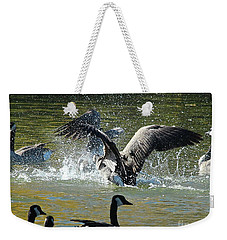Weekender Tote Bag featuring the photograph Canada Goose by Ann E Robson