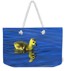 Canada Gosling Goes For A Swim Weekender Tote Bag