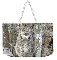 Canadian Wilderness Lynx Weekender Tote Bag by Wes and Dotty Weber