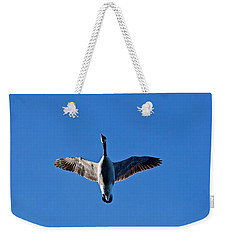 Weekender Tote Bag featuring the photograph Candian Goose In Flight 1648 by Michael Peychich