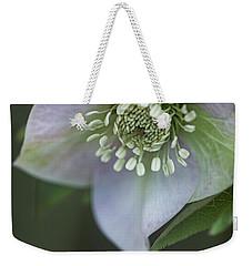 Candy Love Weekender Tote Bag