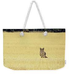 Canidae Weekender Tote Bag