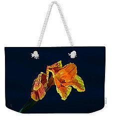 Canna Weekender Tote Bag by Kenneth Albin