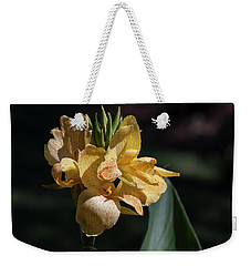 Cannas Amarillo II Weekender Tote Bag by Suzanne Gaff