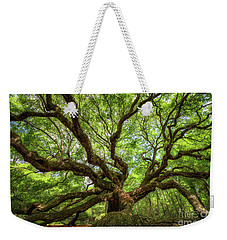 Canopy Of Color At Angel Oak Tree  Weekender Tote Bag by Michael Ver Sprill