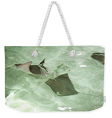 Weekender Tote Bag featuring the photograph Can't Catch Me by Carol Lynn Coronios