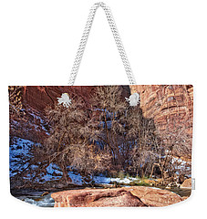 Weekender Tote Bag featuring the photograph Canyon Corner by Christopher Holmes