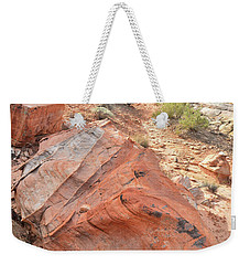 Canyon Of Color In Valley Of Fire Weekender Tote Bag by Ray Mathis