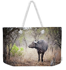 Cape Buffalo In A Clearing Weekender Tote Bag