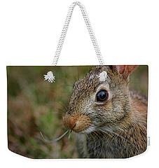Cape Cod Rabbit Weekender Tote Bag by Phil Cardamone