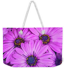 Cape Daisys - Purple Weekender Tote Bag