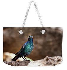 Cape Glossy Starling Weekender Tote Bag