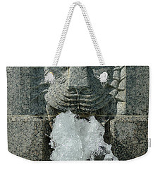Senate Fountain Lion Weekender Tote Bag
