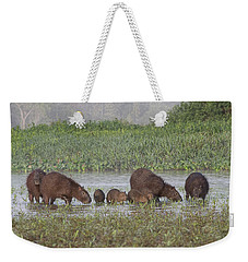 Weekender Tote Bag featuring the photograph Capybara by Wade Aiken