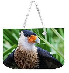 Weekender Tote Bag featuring the photograph Caracara 1 by Arthur Dodd