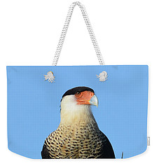 Weekender Tote Bag featuring the photograph Caracara Portrait by Debra Martz