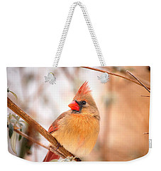 Cardinal Bird Female Weekender Tote Bag