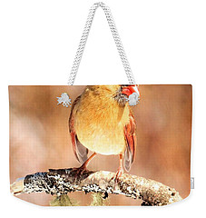 Weekender Tote Bag featuring the photograph Cardinal Happy Holidays by Debbie Stahre