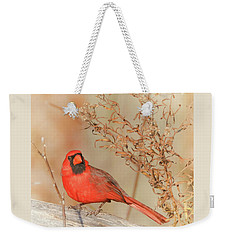 Cardinal In Fall  Weekender Tote Bag