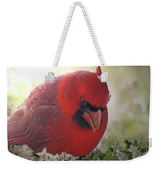 Weekender Tote Bag featuring the photograph Cardinal In Flowers by Debbie Portwood